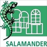 Окна Salamander Киев,  окна саламандр Киев,  установка окон саламандр